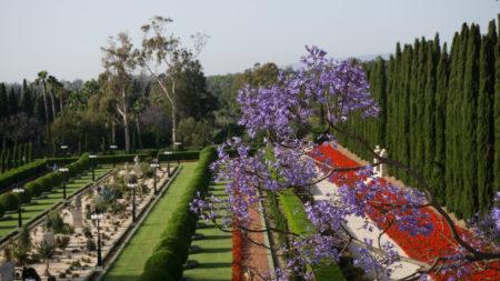 Jardin Badji