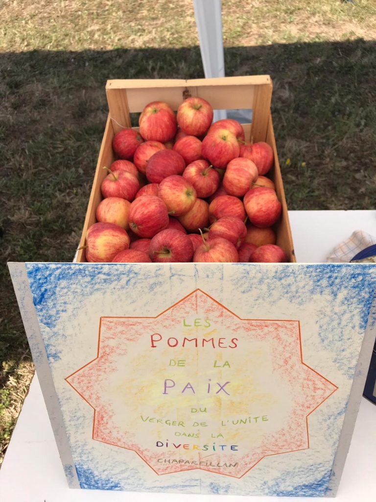 Pommes de la paix - Chapareillan